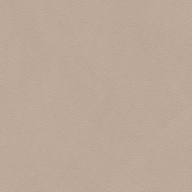 Skai Pandoria Plus Birke