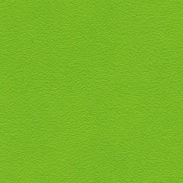 Stamskin Top Frühlingsgrün