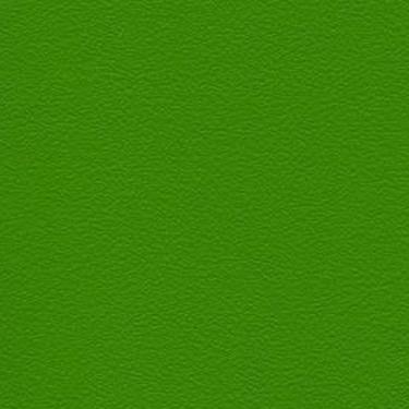 Stamskin Top Grasgrün