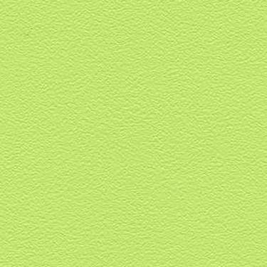 Stamskin Top Pastellgrün